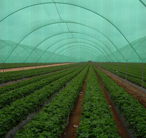 What is the best shade cloth for greenhouse?