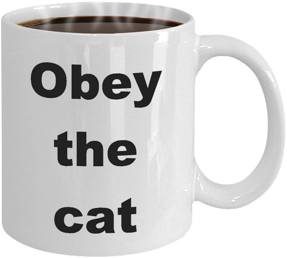 Funny Cat Mug Gift Coffee Tea Cup Ideas For Kitty Lovers Men Women Coffee Cup Tea Cup Ceramic Mug